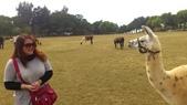 20130316天馬牧場:20130316天馬牧場-02.jpg