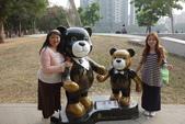 20141124泰迪熊:20141124泰迪熊-117.JPG