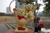 20141124泰迪熊:20141124泰迪熊-127.JPG