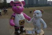 20141124泰迪熊:20141124泰迪熊-134.JPG