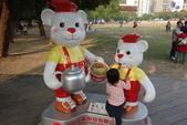 20141124泰迪熊:20141124泰迪熊-156.JPG