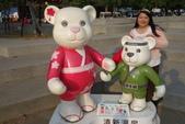 20141124泰迪熊:20141124泰迪熊-144.JPG
