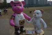 20141124泰迪熊:20141124泰迪熊-133.JPG