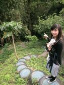 2010      生日旅行    桐花祭和螢火蟲 出發♥:1374945117.jpg