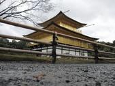 2010 Japan    Kyoto 京都:1040079116.jpg