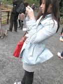2010 Japan    Kyoto 京都:1040079121.jpg