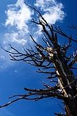大盆地國家公園:CRW_4861