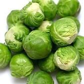 6楓之琳園藝小苗種子圖檔很多稀有植物:brussels-sprouts.jpg