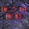 3楓之琳園藝小苗種子圖檔很多稀有植物:crop_0.13491200 1377843927.jpg