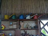 我的收藏:澆花器