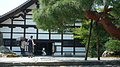 2009日本京都之旅:天龍寺