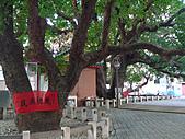 「庇祐庶民」的千年茄苳樹:L1040830.b.jpg