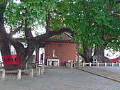 「庇祐庶民」的千年茄苳樹:L1040834.b.jpg