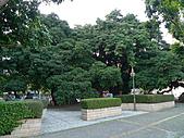 「庇祐庶民」的千年茄苳樹:L1040835.b.jpg