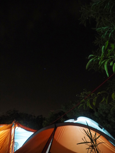 P1010140.JPG - 第93露台南星光