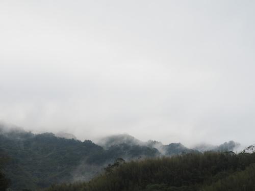 P1010039.JPG - 106年12月2日17杉境