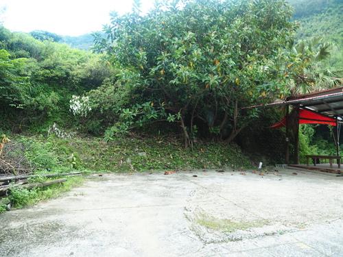 P7220027.JPG - 第81露尖石-哈拉族