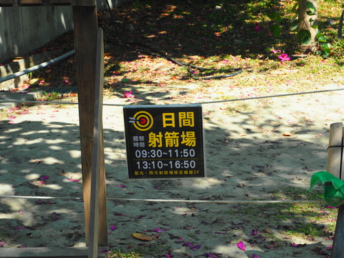 P1010326.JPG - 第93露台南星光
