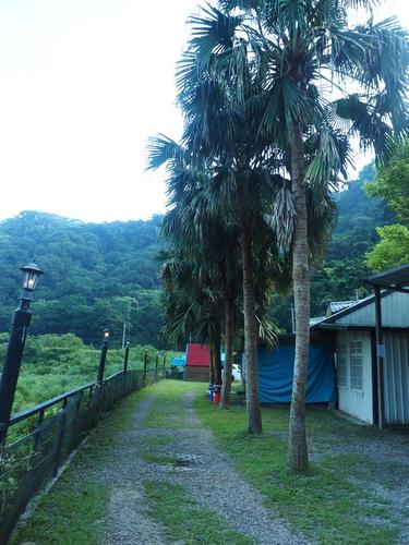 P7220048.JPG - 第81露尖石-哈拉族
