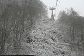 遇見2008飛驒高山初雪:IMG_4810.JPG