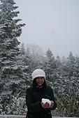 遇見2008飛驒高山初雪:IMG_4830.JPG