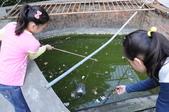 不一樣鱷魚生態農場:DSC_8730.JPG