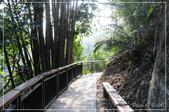 坪瀨.琉璃光之橋:DSC_7407.jpg