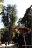 大雪山森林遊樂園區:DSC_8828.jpg