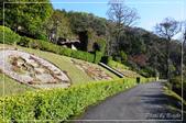 棲蘭國家森林遊樂區:DSC_8186.jpg
