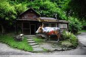 三富休閒農場:DSC_9119.JPG