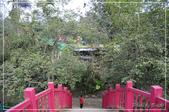 清城農莊:DSC_7559.jpg