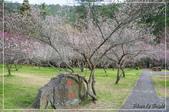 武陵農場:DSC_8337.jpg