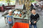 不一樣鱷魚生態農場:DSC_8716.JPG