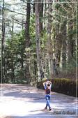 大雪山森林遊樂園區:DSC_8785.jpg
