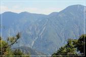 大雪山森林遊樂園區:DSC_8782.jpg