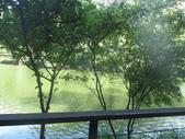 慈湖:IMG_9836.JPG