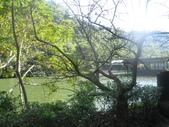 慈湖:IMG_9744.JPG
