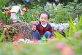 外拍兒童照~:IMG_7572.JPG