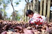 絕色攝影Taipei photo studio UN 親子攝影/外拍全家福:IMG_0516.JPG