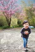 絕色攝影Taipei photo studio 親子攝影/外拍全家福:IMG_0039.JPG