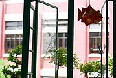 Macau 澳門:吊在窗邊的紙魚