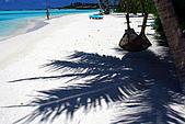 Maldives:躲太陽 漂亮的椰影