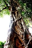Thailand Surin Similan & HKT:Banyan Tree