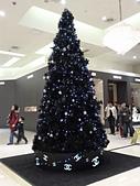 台湾にいる:BR4聖誕樹