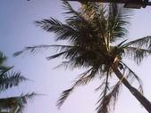 戶外踏青身體好!:墾丁夏都沙灘酒店