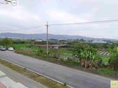 林內濁水溪四季豆:42569印.jpg
