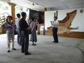 桃米生態村-大陸上海政協高小玫副主席及隨團團員社區參訪0077:P1030726.JPG