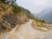 谷關新地標-石頭山:P1010010