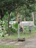 林內林北社區御香園庭園燈修復過程:IMG_2300.JPG