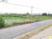 林內濁水溪四季豆:42565印.jpg
